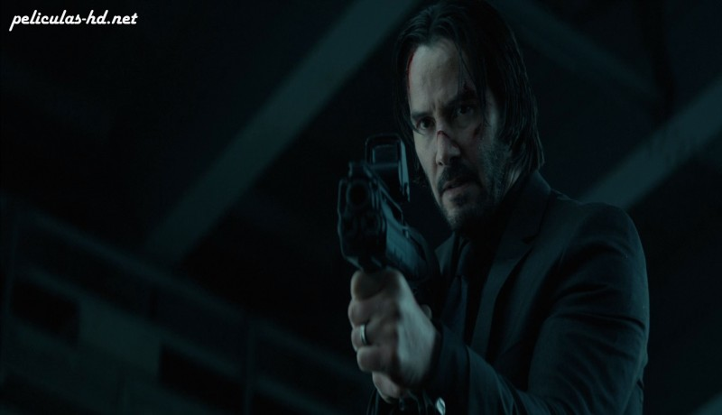Download John Wick